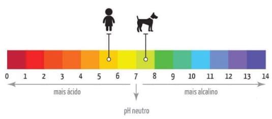 usar shampoo de humanos no meu cachorro