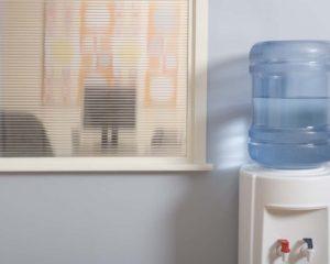 bebedouro de água em casa