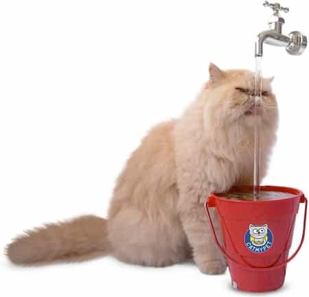 Bebedouro para Gatos Magicat Vermelho Catmypet