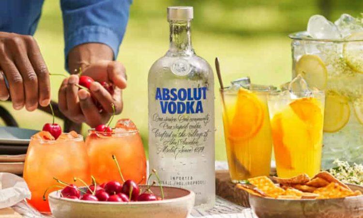 escolher melhor vodka